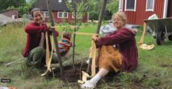 Meet Astasakhi dasi a gardener & flower artist in Iskcon Sweeden (9 min. video)