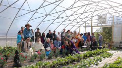 High Tunnels Grow Vegetables and Flowers for New Vrindaban Deities into Winter Months