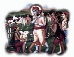 Krishna's Sympathy