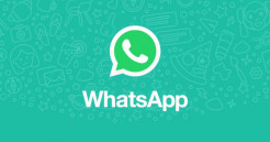 Your Invitation to Join the TOVP NOW! WhatsApp Group