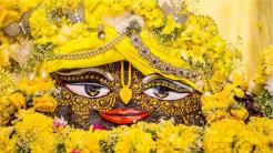 Vasanta Pancami - Awakening Shades of Yellow and Green