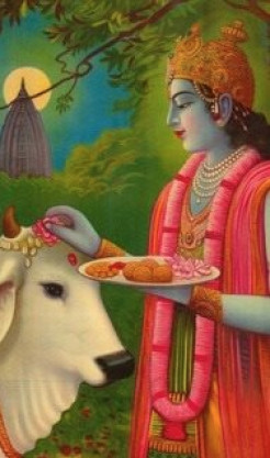 Should ISKCON Devotees become Vegan?