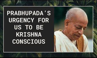 Srila Prabhupada's Urgency for Us to be Krishna Conscious! (5 min. video)